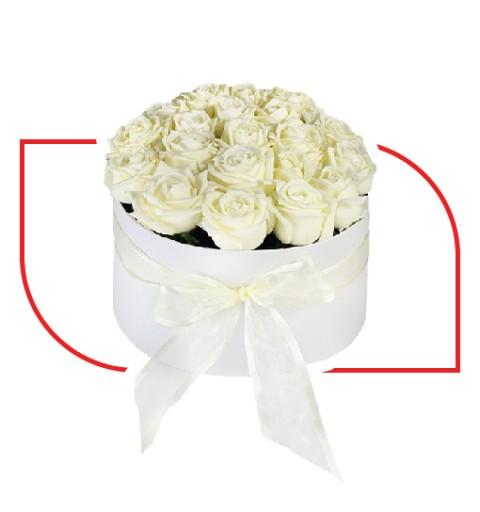 White Precious Box